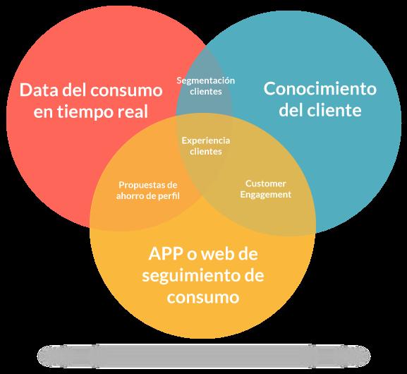 Servicio centrado en el usuario Cristal Chile